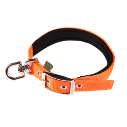Picture of Dog Collar FOREST with a swivel