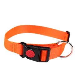 Picture of Retractable Dog Collar FOREST