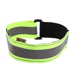 Picture of Collar – green band