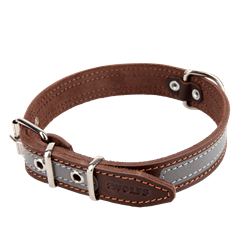 Picture of Reflective Dog Collar NATURE