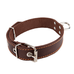 Picture of Dog Collar NATURE with swivel