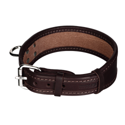 Picture of Dog Collar HEKTOR